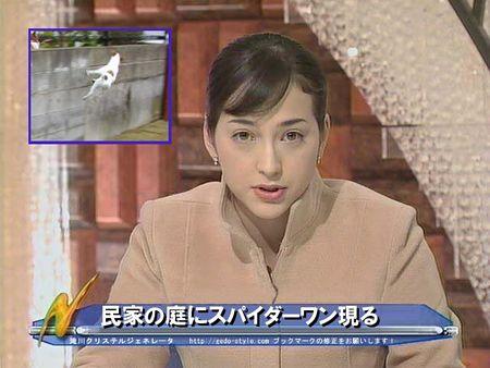 news2.jpg